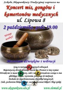misy_LIPOWA_2 (1)