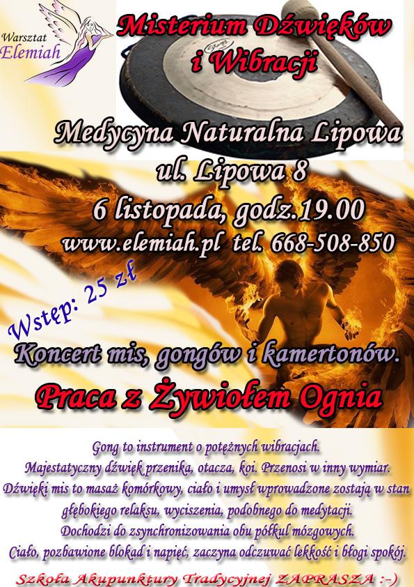 misy_lipowa_listopad_ogien