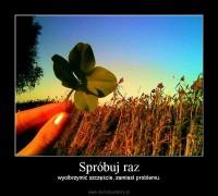 1285882822_by_Pszczolawpiwie_600